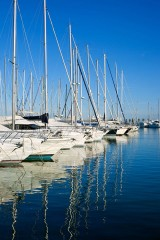 sailboats in a marina